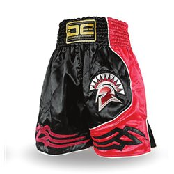Shorts BOXING K1 DANGER INTER